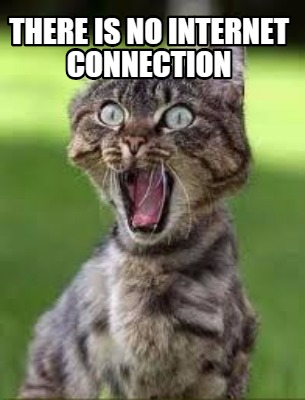 cat meme shocked face with no internet connection